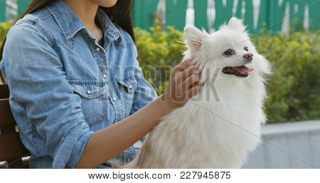 Woman massaging her dog at outdoor