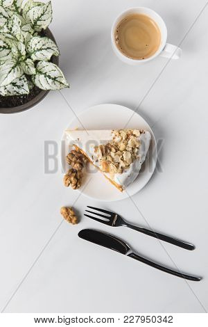 Top View Of Cake On Plate With Cup Of Coffee And Potted Plant