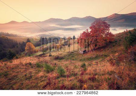 Retro Style Photo Of Mountain Hills At Misty Autumn Morning