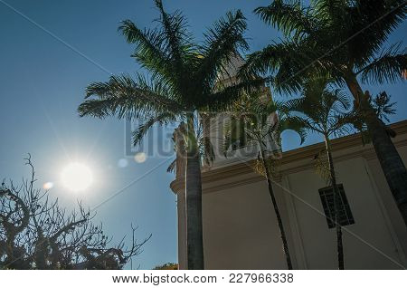 Detail Of Church Side With Steeple, Palm Trees And Evergreen Garden, In A Bright Sunny Day At Sao Ma