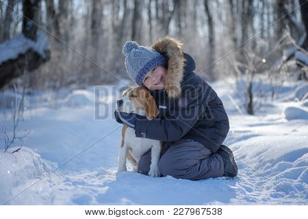 Boy And Beagle Dog Walking And Playing In The Winter Snow-covered Forest In A Frosty Sunny Day