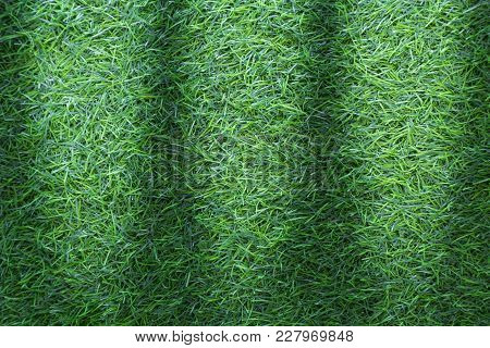 Grass Texture Background For Golf Course, Soccer Field Or Sports Concept Design.