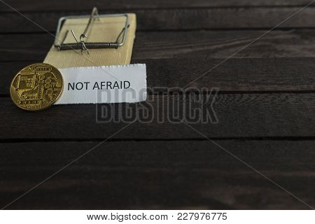 Mouse Trap, Backside Of Bitcoin And The Word Not Afraid