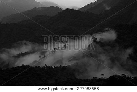 Layers Of Black And White Cloudforest Mountains In Ecuador, On The Way Down To The Amazonas Basin, S