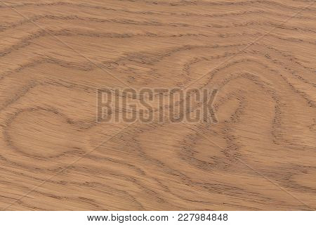 Lining Boards Wall. Wooden Background Pattern. Showing Growth Rings. Hi Res Photo.