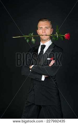 Man With Red Rose In Mouth On Dark Background. Ballroom Dancer In Suit With Flower. Valentines Day C