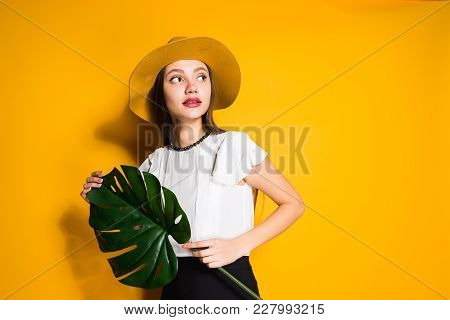 Attractive Young Girl In Trendy Hat Posing, Holding A Green Leaf