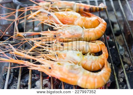 River Shrimp Or River Prawn Grilled Barbecue Seafood On Charcoal Stove. Close Up On Fired Food, Thai