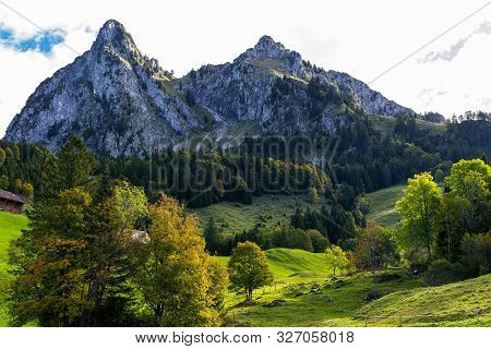 Alpine Landscapes Of Switzerland. Green Forest At The Foot Of The Big Mountains.