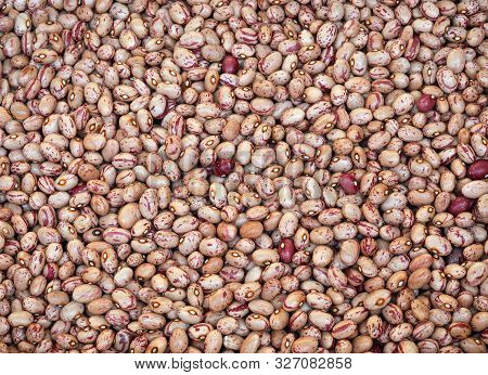 Background Of Beans Of Pinto Quality Also Called Borlotto In Italian Language