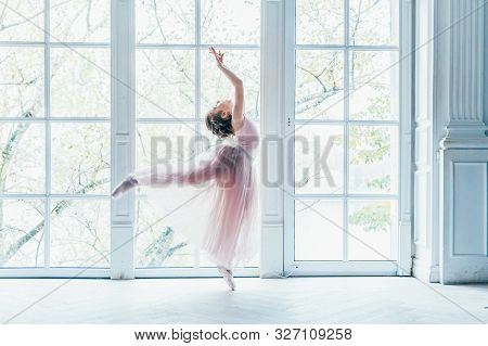 Young Classical Ballet Dancer Girl In Dance Class. Beautiful Graceful Ballerina Practice Ballet Posi