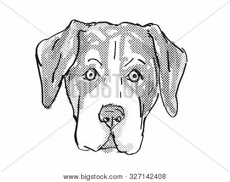 Retro Cartoon Style Drawing Of Head Of An Entlebucher Mountain Dog, A Domestic Canine Breed On Isola