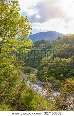 Landscape Of Forest With Mountain And Stream In Japan