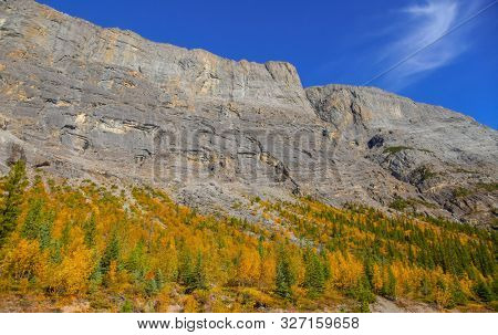 Autumn landscape view from Icefields parkway in Jasper national park