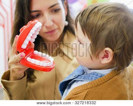 Layout Of The Human Jaw. Jaw Toy. Layout To Demonstrate The Jaw To Dental Students. Mom Shows The Ja