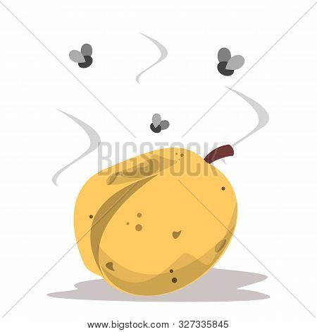 Rotten Apricot And Fly Around Vector Isolated. Vegetarian Food