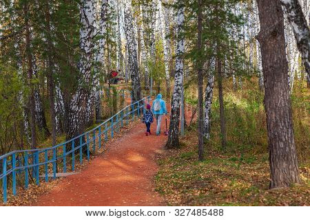A Path Of Orange Rubble In A Park With Trees In A Birch Forest In The Afternoon On A Clear, Fresh Af