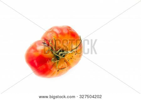 Rotten, Spoiled Tomato With Sepals Or Calyx, Uneven Ripening And Mold Spots On Skin Isolated On Whit