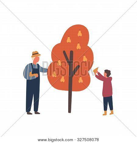 Autumn Fruits Harvest Flat Vector Illustration. Old Farmer And Little Boy Cartoon Characters. Grandf