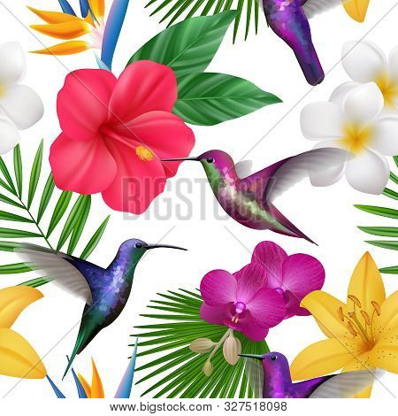 Tropical Pattern. Colibri With Exotic Flowers Flying Little Hummingbirds Botanical Vector Beautiful
