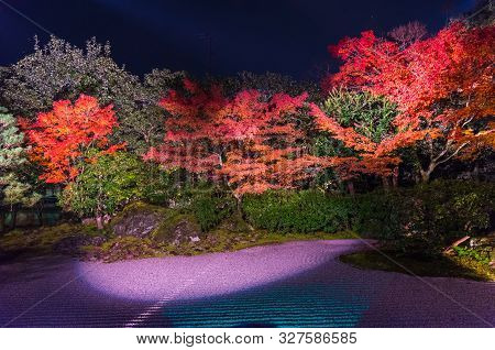 Light Up At Night, Autumn Scenery Of Maple Trees By Majestic Traditional Japanese Architectures In .