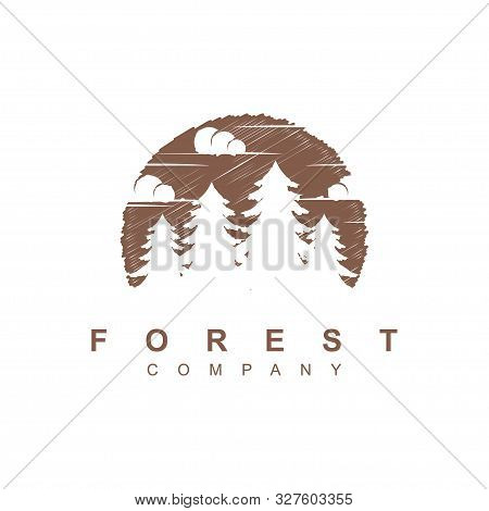 Forest Tree Logo Design Vector Template.pines Wood Illustration