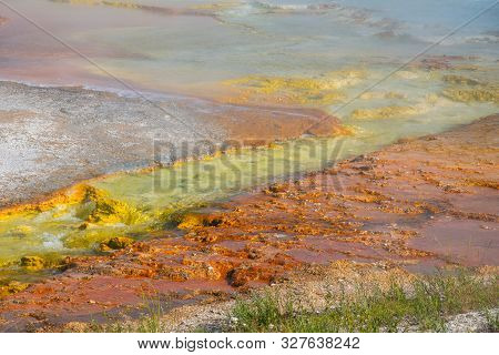 Grand Prismatic Spring In Yellowstone National Park (usa)
