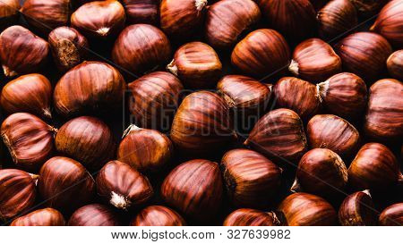 Ripe Chestnuts Close Up. Raw Chestnuts For Christmas. Fresh Sweet Chestnut. Food Background.