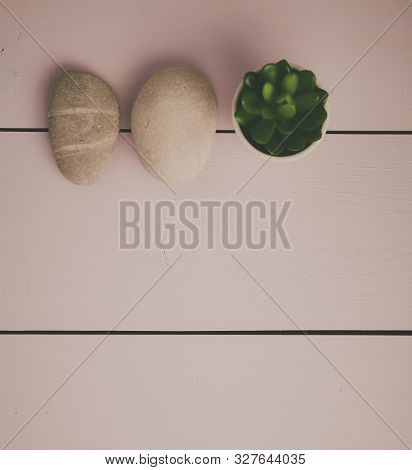 Stones And Plant On The White Background