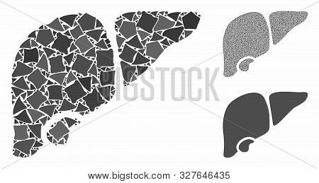 Liver composition of unequal pieces in variable sizes and color tinges, based on liver icon. Vector ragged pieces are composed into collage. Liver icons collage with dotted pattern. poster