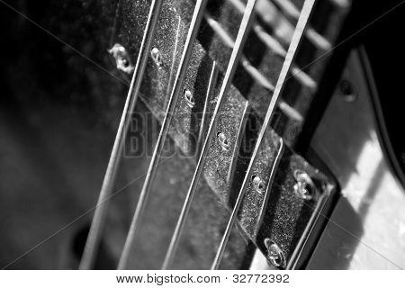 Bassguitar
