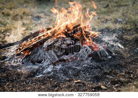 Campfire on meadow in rural place