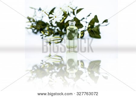 Juhi Or Jasminum Auriculatum Or Indian Jasmine Flowers Isolated On White With Its Essential Extracte