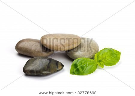 Pebbles And Leaves