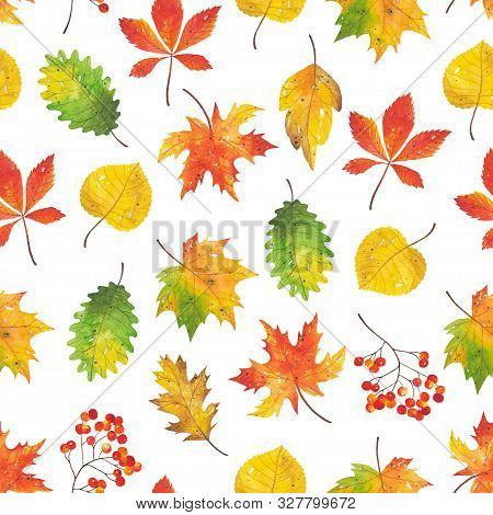 Seamless Autumn Bright, Colorful Pattern Of Leaves, Branches And Mountain Ash. Hand-drawn Autumn For