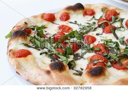 Tomato and fresh basil pizza