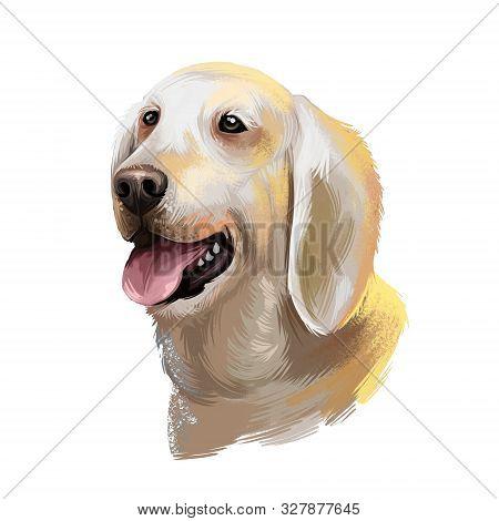 Billy Dog, Poitou Hound Dog Digital Art Illustration Isolated On White Background. French Origin Lar