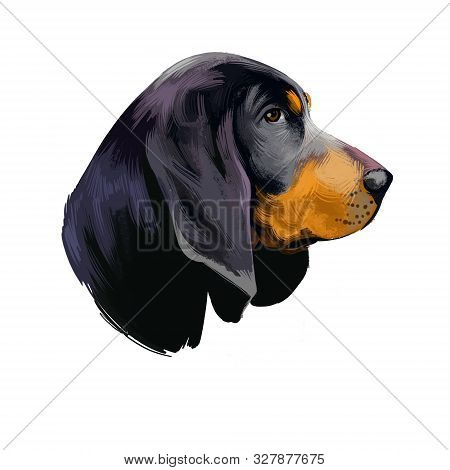 American Black And Tan Coonhound Dog Digital Art Illustration Isolated On White Background. American
