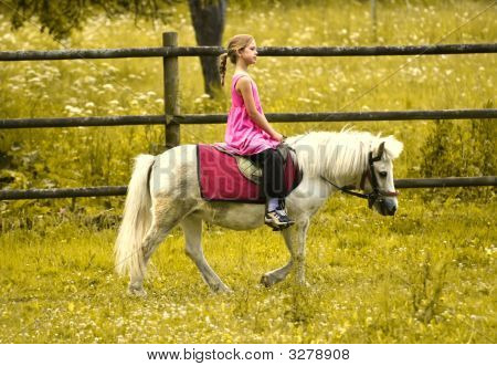 Little girl in pink dress riding white pony poster