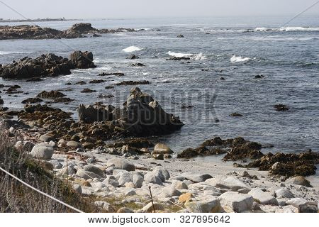 This Is An Image Of A Protected Area Of Asilomar State Preserve In Pacific Grove, California.