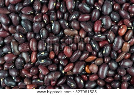 Beans Bean. Background Of Many Grains Of Dried Beans. Brown Beans Texture. Food Background. Close Up
