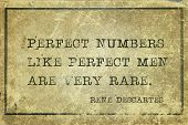 Perfect numbers like perfect men are very rare - ancient French philosopher and mathematician René Descartes quote printed on grunge vintage cardboard poster