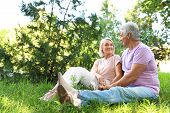 Portrait of affectionate senior couple in park. Space for text poster