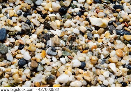 Selective Focus Multi-colored Pebbles On The Seashore. Sea Stones Of Various Sizes Cover The Seaside