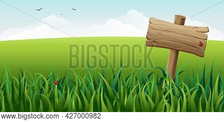 Wooden Sign In Grass On Field Vector Illustration. Horizontal Green Summer Landscape With Signboard,