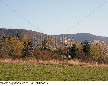 Nature Of Silesian Beskid Mountains Range In European Bielsko-biala City In Poland, Clear Blue Sky I