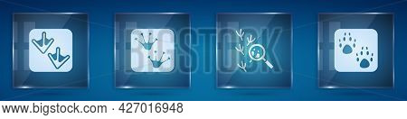 Set Goose Paw Footprint, Frog, Bird And Paw. Square Glass Panels. Vector