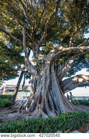 Alameda De Apodaca, A Public Park And An Example Of The Eclectic Style Of Regionalism In Cadiz, With