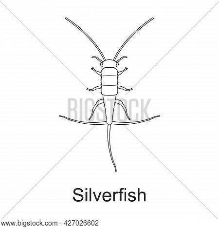 Beetle Insect Vector Outline Icon. Vector Illustration Bug Insect On White Background. Isolated Outl