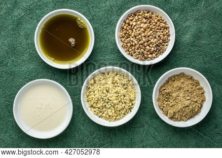 collection of hemp seed products: hearts, protein powder, milk and oil in small white bowls against textured green paper, superfood concept
